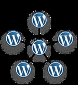 wordpress multisite network